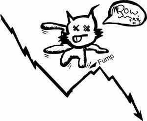 dead cat bounce - mrtvá kočka