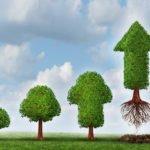 Uspěje investiční portfolio z TOP 100 kryptoměn? – 1.část