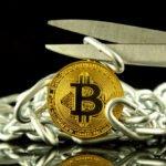 Bitcoin Cash a ring volný – kdo vyhraje? Analýza