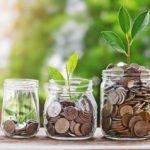 Uspěje investiční portfolio z TOP 100 kryptoměn? 6. díl