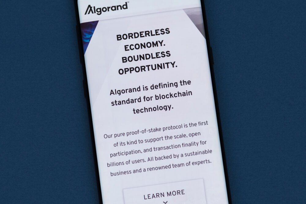 Algorand Pure Proof of Stake